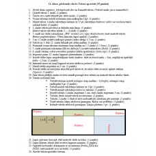 11. klase, pārbaudes darbs Teksta apstrāde